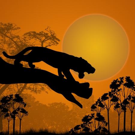 silueta tigre: Vista de la silueta de un tigre en un árbol al atardecer hermoso, ilustración vectorial Vectores