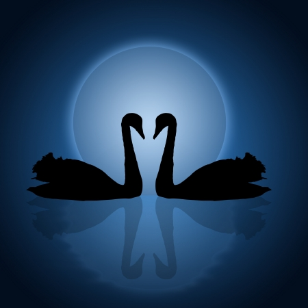 twilight: Two swans under the blue sunset, vector illustration