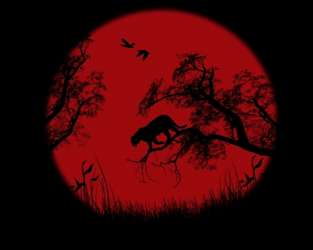 panthera: Silhouette of leopard on tree Illustration