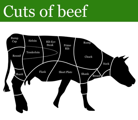 steaks: Cuts of beef background, vector illustration