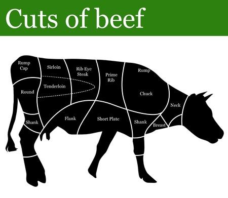 carniceria: Los cortes de carne de fondo, ilustraci�n vectorial Vectores