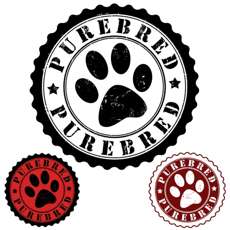 Grunge rubber stamp, with word purebred and animal footprint inside, vector illustration Vector