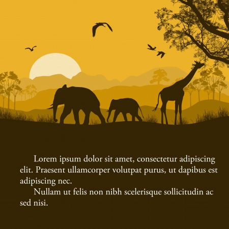 sunset painting: Wild african animals silhouettes in beautiful sunset design with space for your text, vector illustration