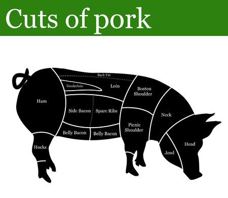 Sneden van varkensvlees of varkens achtergrond, vector illustratie