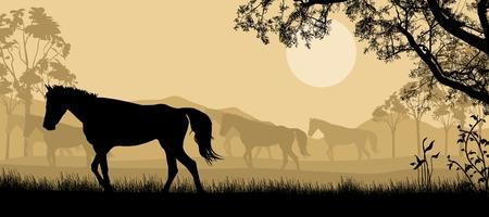 dobbin: Herd of horses silhouette on beautiful landscape, vector illustration Illustration