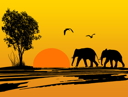 Elephants silhouette in africa at beautiful sunset, vector illustration Vector