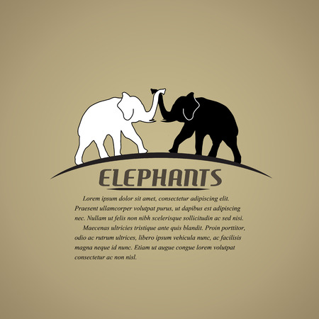 Black and white elephants in love  in vitage style poster, vector illustration Vector