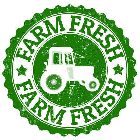 farm fresh: Farm Fresh grunge timbro di gomma su bianco, illustrazione vettoriale