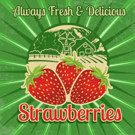 healty lifestyle: Vintage poster template for strawberries farm, vector illustration