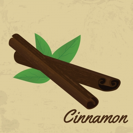 cinnamon bark: Cinnamon sticks on vintage poster design, vector illustration Illustration