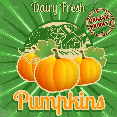 Vintage farm fresh pumpkins poster, vector illustration Vector