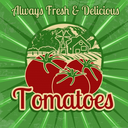 healty lifestyle: Vintage poster template for tomatoes farm, vector illustration Illustration