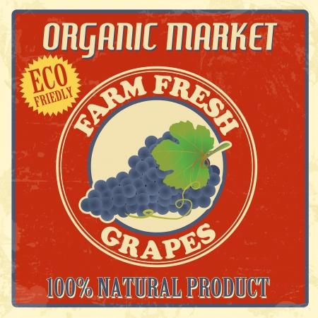 Vintage farm fresh organic grapes poster, vector illustration Vector