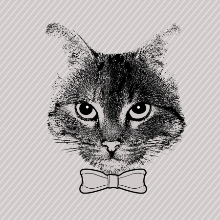 grey cat: stylized cat face with bow theme on grey