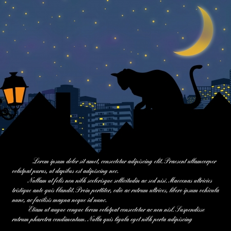 roof top: Fairy night with cat on roof and space Illustration