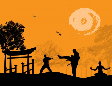 Karate in the sunset background, vector illustration Vector
