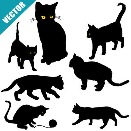 silueta gato negro: Siluetas de los gatos en el fondo blanco, ilustración vectorial