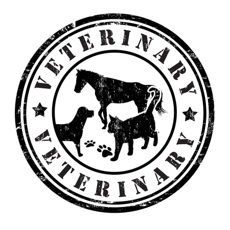 Veterinary grunge rubber stamp on white, vector illustration Vector