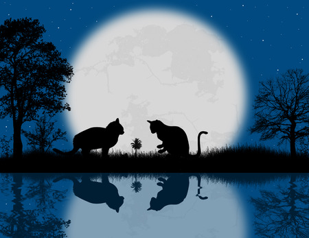 reflexion: Fairy night background with cats and reflexion on water, vector illustration