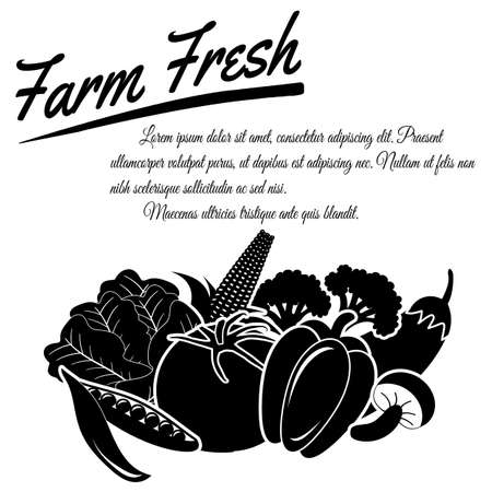 Farm fresh vegetables design poster on white background with space for your text, vector illustration Vector