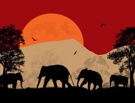 Wild elephants at sunset on beautiful landscape illustration Vector
