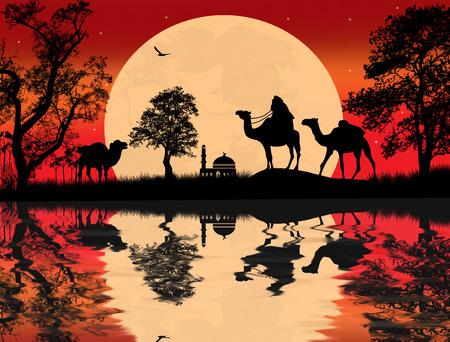 desierto del sahara: Caravana de camellos beduinos en el paisaje árabe en puesta del sol