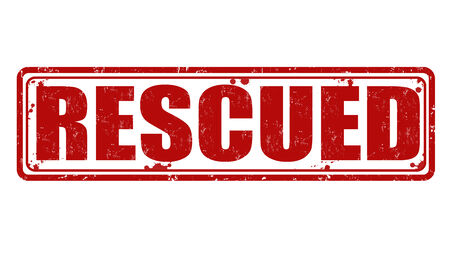 rescued: Rescued  grunge rubber stamp on white, vector illustration