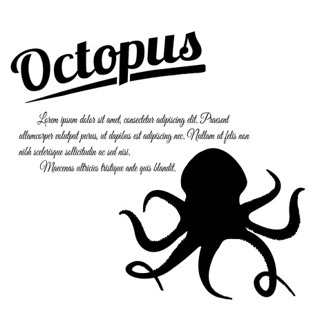 Octopus design poster on white background with space for your text, vector illustration Vector