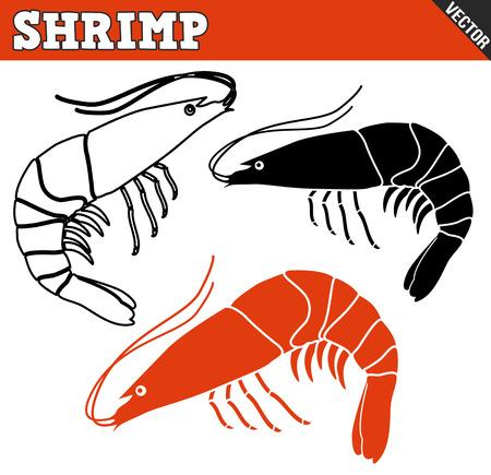krill: Shrimp set on white background, vector illustration Illustration
