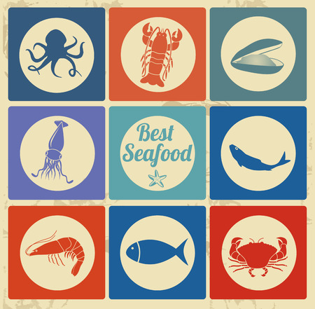 squid: Best seafood icon set on vintage background, vector illustration