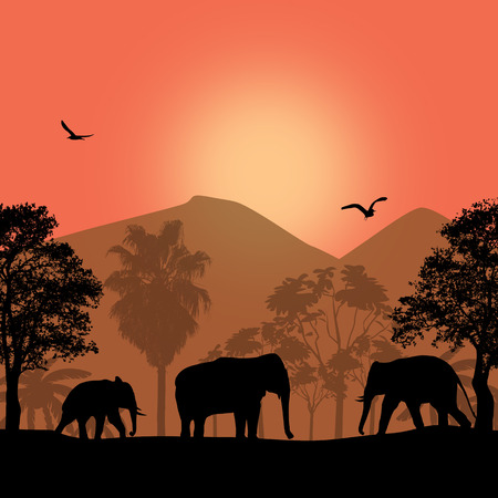 Sunset landscape vector: Elephant family in wild african landscape at sunset, vector illustration