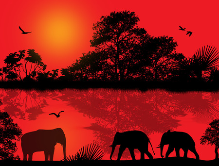Elephants silhouette in africa near water at beautiful sunset, vector illustration