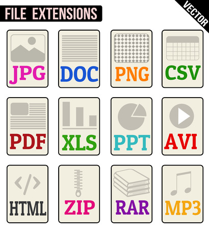 file types: File types icons set on white background, vector illustration