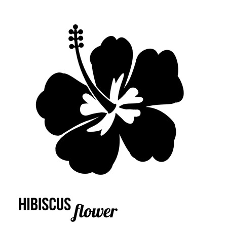 Hibiscus flower in black and white, vector illustration