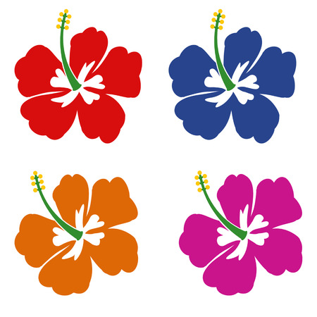Set of Hibiscus flowers on white background, vector illustration