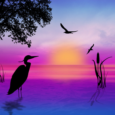 egret: Egret silhouette on lake at beautiful sunset, illustration background