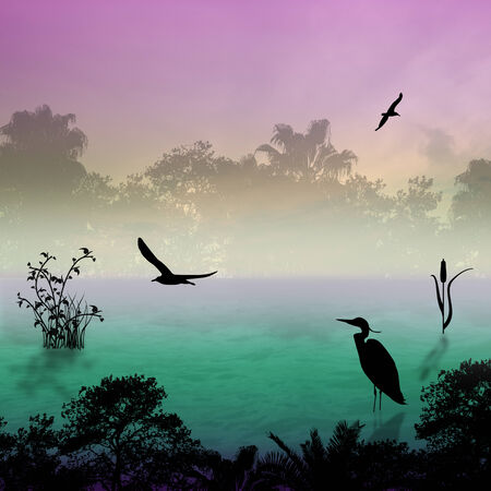 egret: Egret silhouette on lake at foggy morning, illustration background