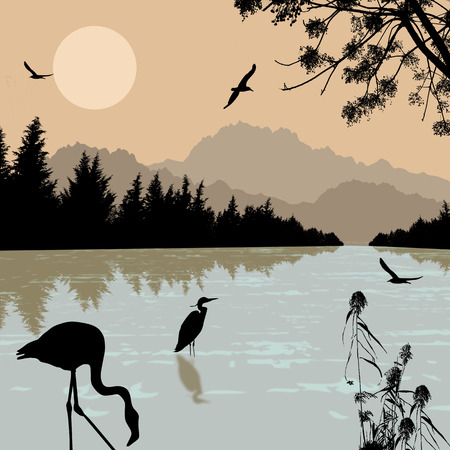 Heron an flamingo silhouettes on river at beautiful place Illustration
