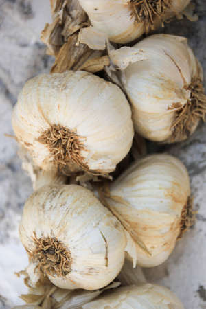 repelling: String of garlic close up Stock Photo