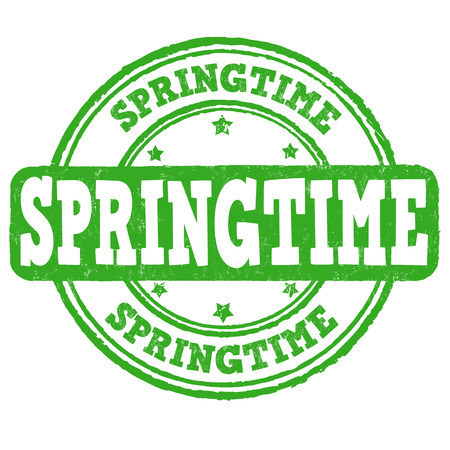 springtime: Springtime grunge rubber stamp on white, vector illustration