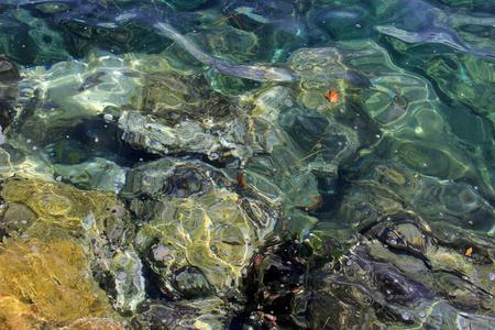 rocks water: Rocks under sea water