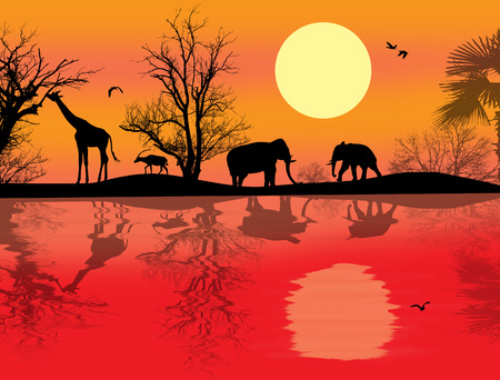 African safari theme vector illustration with giraffes and elephants on sunet