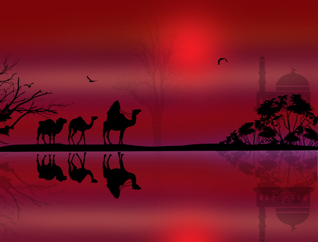 red sunset: Bedouin camel caravan in beautiful landscape near water on red sunset
