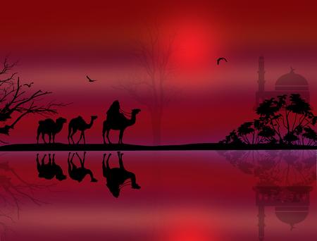 bedouin: Bedouin camel caravan in beautiful landscape near water on red sunset