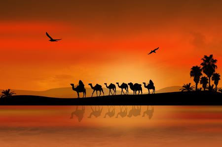 animales del desierto: Caravana de camellos atravesando el desierto en la hermosa puesta de sol, ilustración de fondo