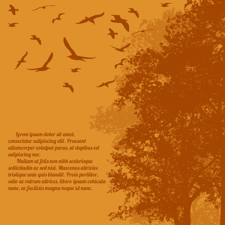 orange trees: Beautiful forest trees with flying birds on orange with space for your text, vector illustration