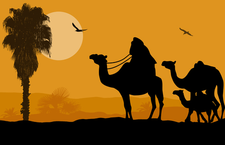 camel silhouette: Camel caravan on beautiful landscape at sunset, vector illustration