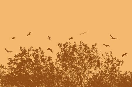 tree silhouettes: Tree and branches with flying birds on orange with space for your text, vector illustration Illustration