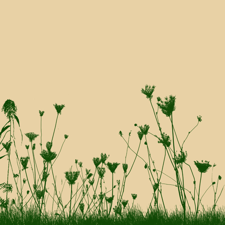 meadow: Natural wild plants on grass silhouette on yellow background, vector illustration