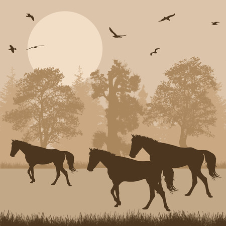 peaceful background: Silhouettes of horses in beautiful forest, vector illustration